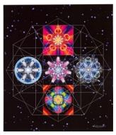 5 Element Resonance